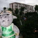 Rocky the Bull doll in Puerto Rico
