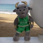 Rocky the Bull doll in front of the beach in Puerto Rico